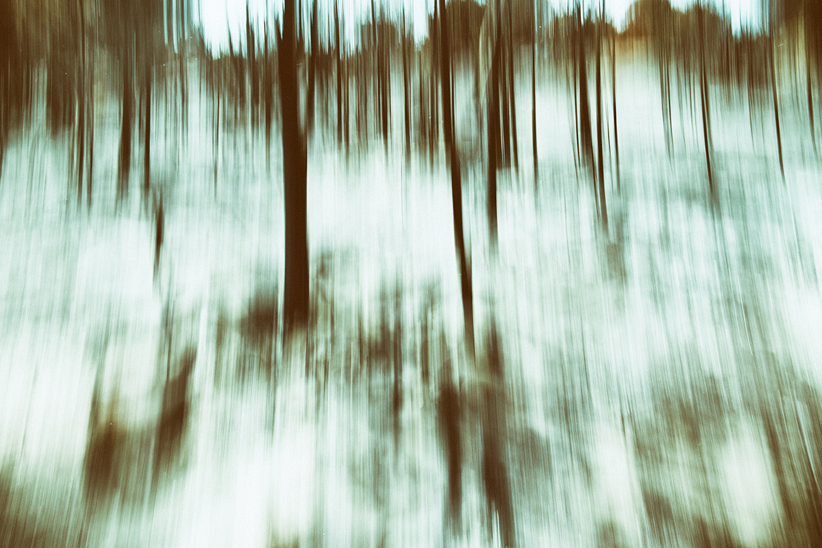Donato Chirulli Photography - The Ballade of the Burning Trees 003